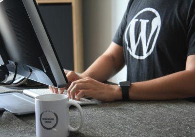 WordPress Advantage And Disadvantage